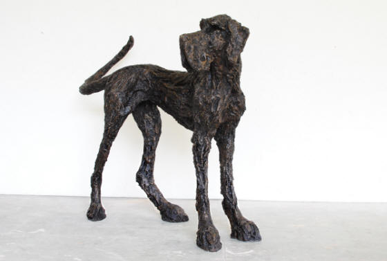 Clare Trenchard Standing Dog  edition of 12  ht 112 x 66 x 123  bronze resin £3850  bronze £poa