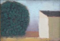 Tree and Lake House