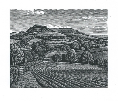 Eggardon Hill Howard Phipps woodcut print 4 x 5inches £230 framed