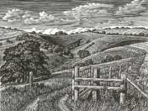 Malacombe Bottom Howard Phipps wood engraving £225 framed