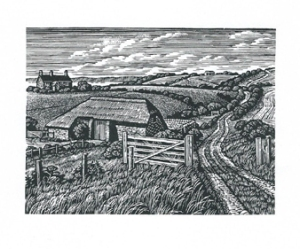 Ringstead Barn, Weymouth Bay  Howard Phipps wood engraving  3 x 4 inches £205 framed