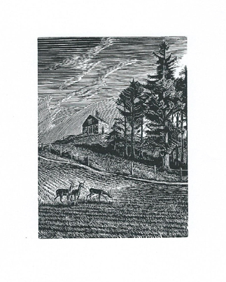Swyre Knoll, Dorset Howard Phipps wood engraving 4 x 3 inches £205 framed