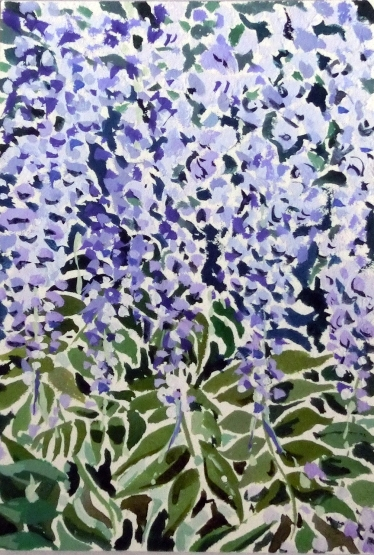 Wisteria Light Study I Tim Cumming 7 x 5 in gouache on paper £150