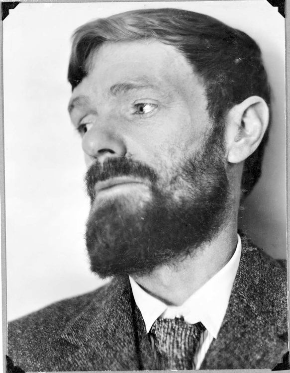 d.h lawrence essays Free essay: the story the rocking-horse winner written by d h lawrence tells of a young boy named paul who tries to win his mother's affection.